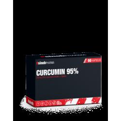 Blackline 2.0 Curcumin 95% 60 Kapsel